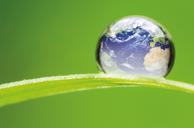 Globe on green leaf CSR