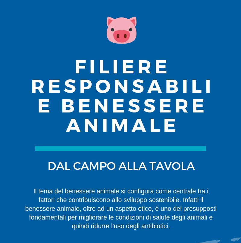 AnimalWelfare-Preview.jpg